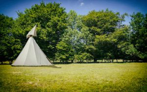 Tipi-Comp-2 copy